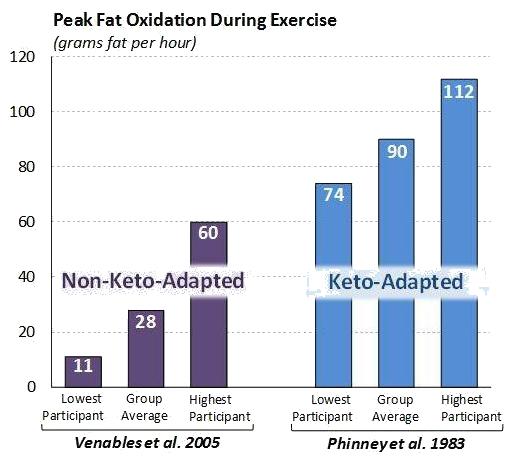 Fettverbrennungsrate bei Ketose